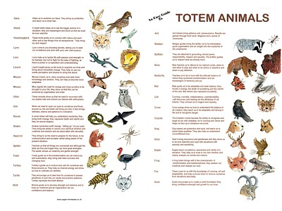 Totem Animals Easy Guides