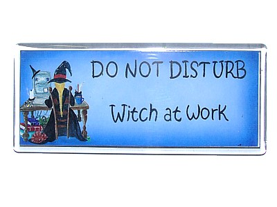 Do Not Disturb Witch at Work Magnet