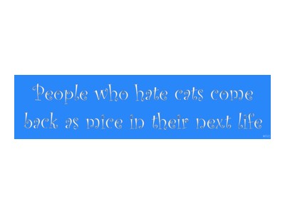 People Who Hate Cats Bumper Sticker