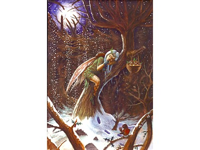 Winter Fairy Card A6