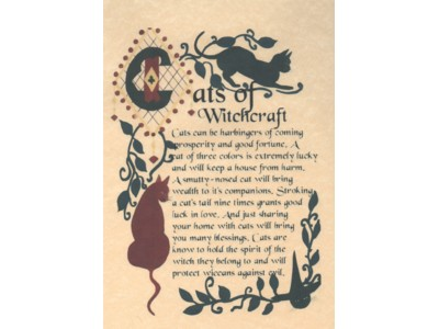 Cats of Witchcraft Poster NEW