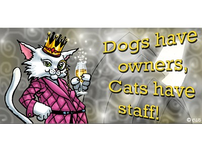 Dogs Have Owners Cats Have Staff Elite Sign