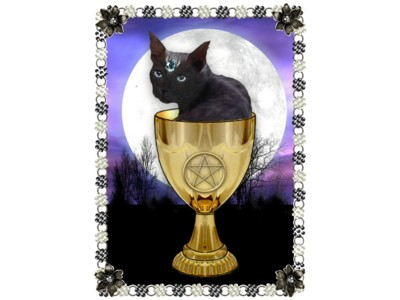 Mystic Moggy Card A6