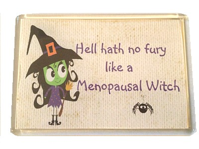 Hell Hath No Fury Magnet